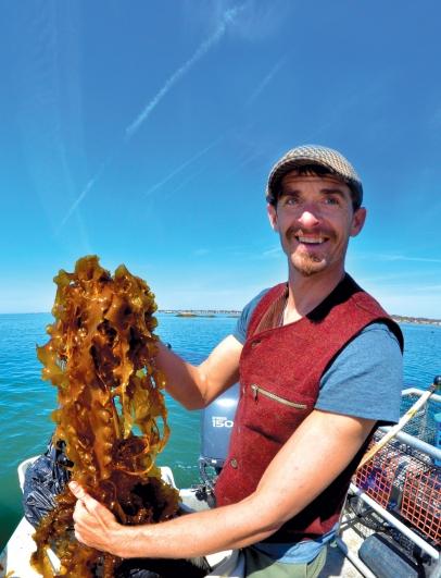 Isaac Taylor with kelp