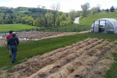 John Motsinger and Bill Duesing tour Happy Acre Farm's mulched beds in Sherman