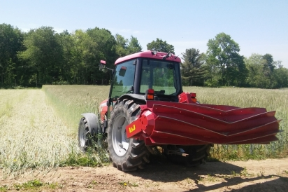 A roller crimper attachment is used in spring to flatten (rather than plow) cover crops