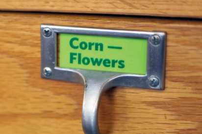 card catalog for seeds