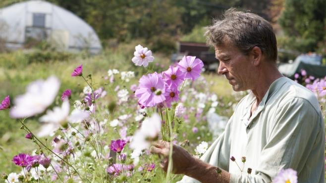 Kingsley Goddard in a field
