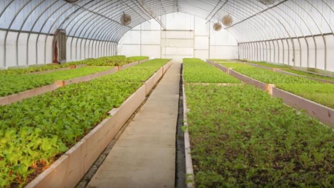 Gilbertie's Herb Garden